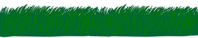 green_grass_3